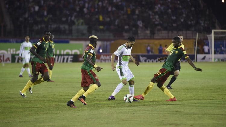 و الجزائر - توقيت والقنوات الناقلة لمباراة الكاميرون و الجزائر