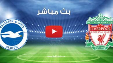 بث مباشر مباراة ليفربول وبرايتون