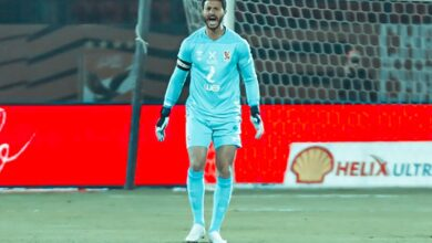 محمد الشناوي