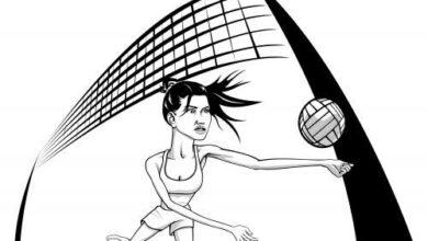 كيف تلعب كرة الطائرة