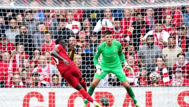 هدف ساديو ماني ضد بيرنلي 2-0 الدوري الانجليزي